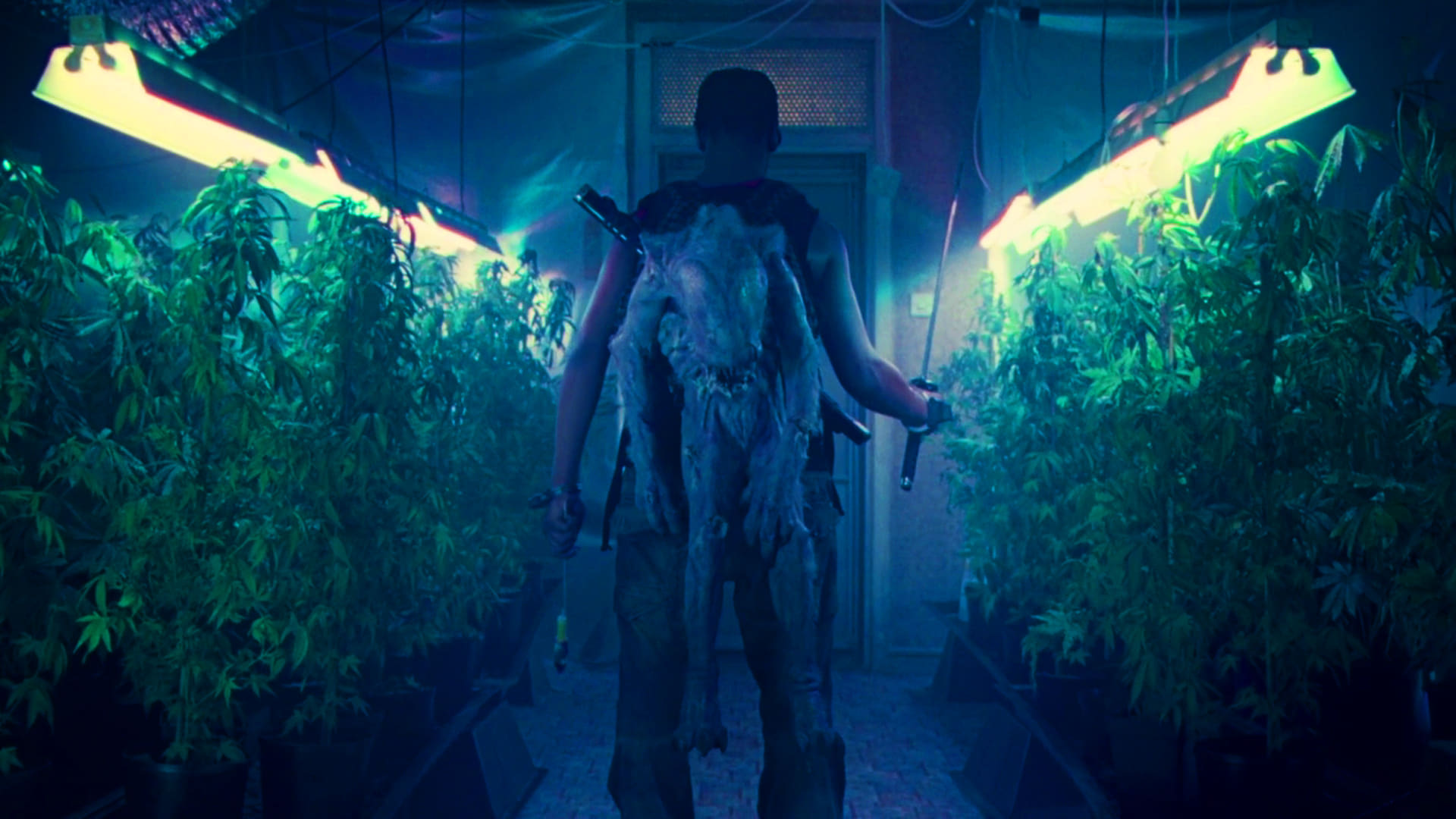 "Image du film ""Attack The Block"""