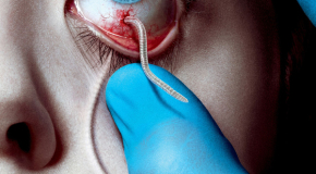 The Strain : l'infection se propage
