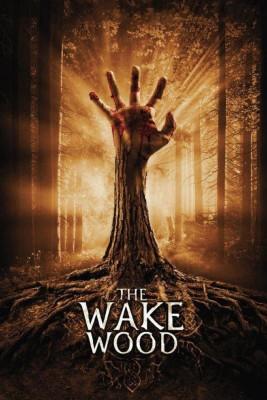 "Affiche du film ""Wake Wood"""