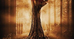 "Affiche du film ""Wake Wood"""