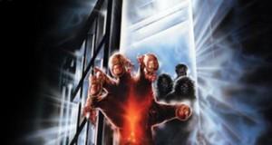 """Affiche du film """"Zombie 4 - Aprés la mort"""""""