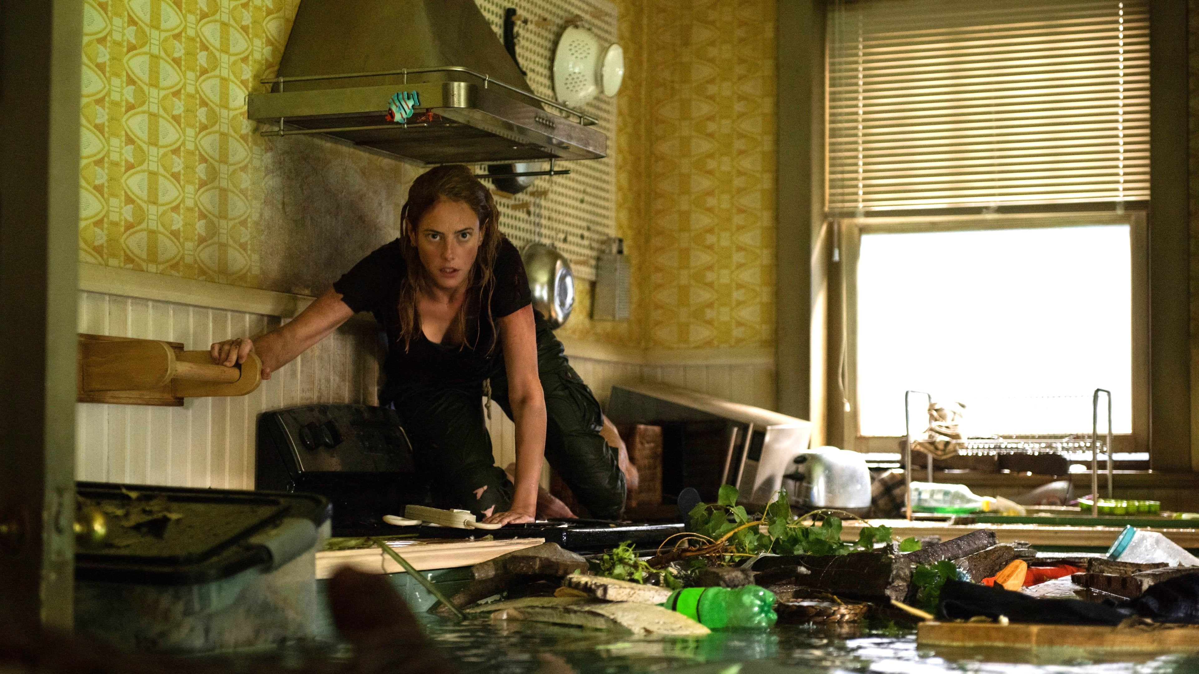 "Image du film ""Crawl"""