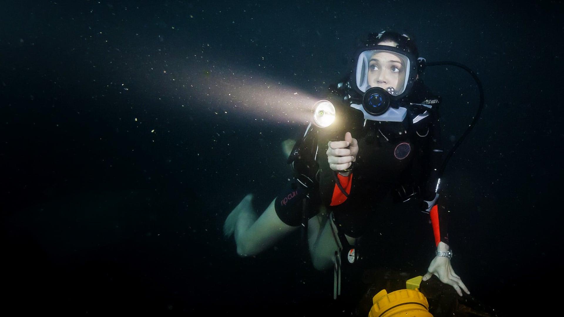 """Image du film """"47 Meters Down"""""""