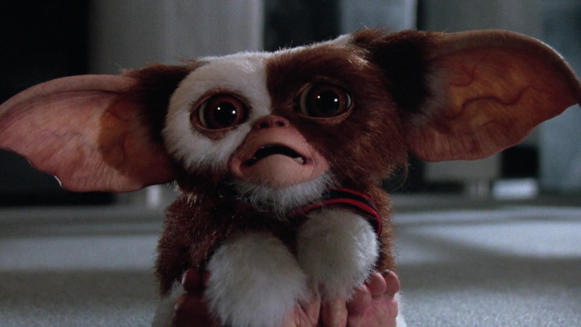 """Image du film """"Gremlins"""""""