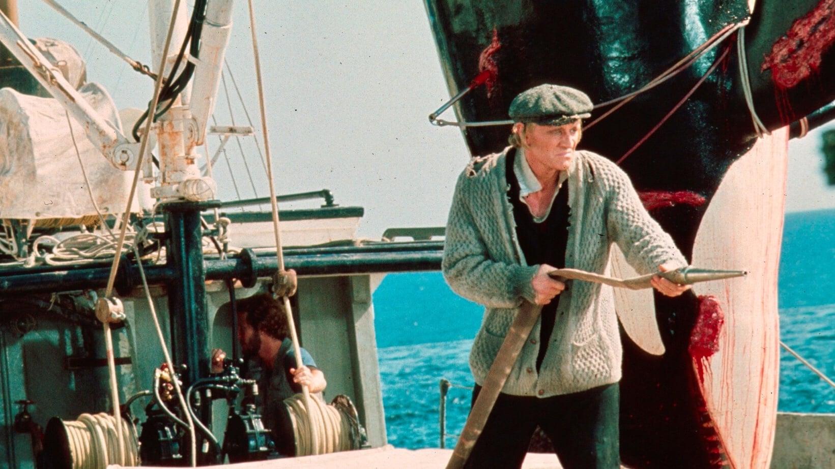 "Image du film ""Orca"""