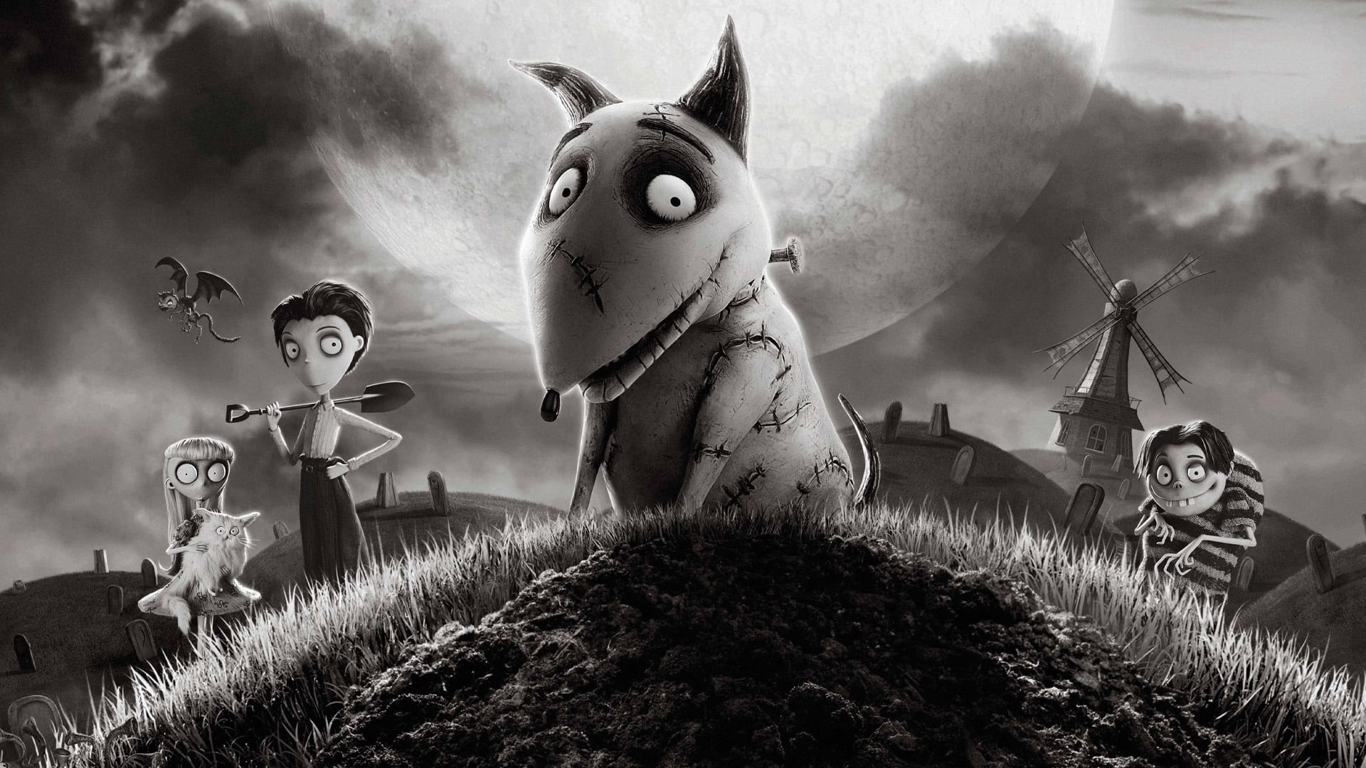 "Image du film ""Frankenweenie"""